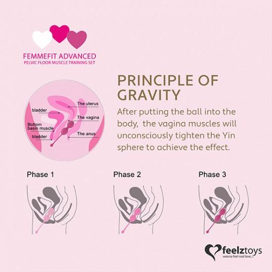 femmefit advanced pelvic muscle training set 3 pcs  feelztoys